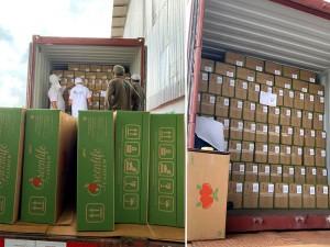 Exportações deverão ser ampliadas (Foto: cedida)
