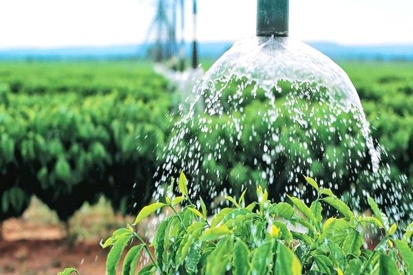 Desenvolvimento tecnológico ao longo das últimas décadas levou agricultura a avanços (Foto ilustrativa)