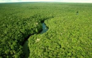 Sustentabilidade é o xis da questão (Foto ilustrativa)