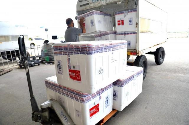 Nova remessa chegou nesse domingo (20) ao Rio Grande do Norte (Foto: Sandro Menezes)