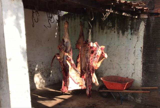 Mais de meia tonelada de carne em condições precárias ao consumo humano (Foto: divulgação)