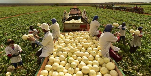 Empresa está espalhada por estados nordestinos, como Ceará e RN (Foto: arquivo/Valor/Globo)