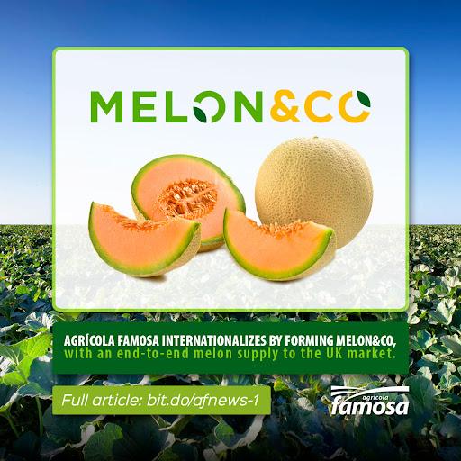 Melon & Co. - Agrícola Famosa